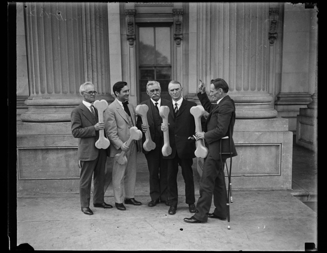"""[Group of men holding bones, probably connected to """"Bone dry"""" support of prohibition; William D. Upshaw, proponent of temperance movement, at right. U.S. Capitol, Washington, D.C.]"""