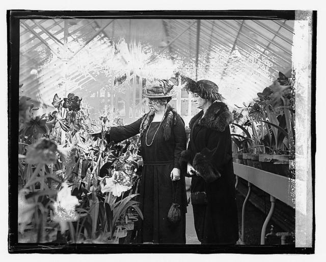 Mrs. Wallace & Mrs. Pugsley, [3/14/23]