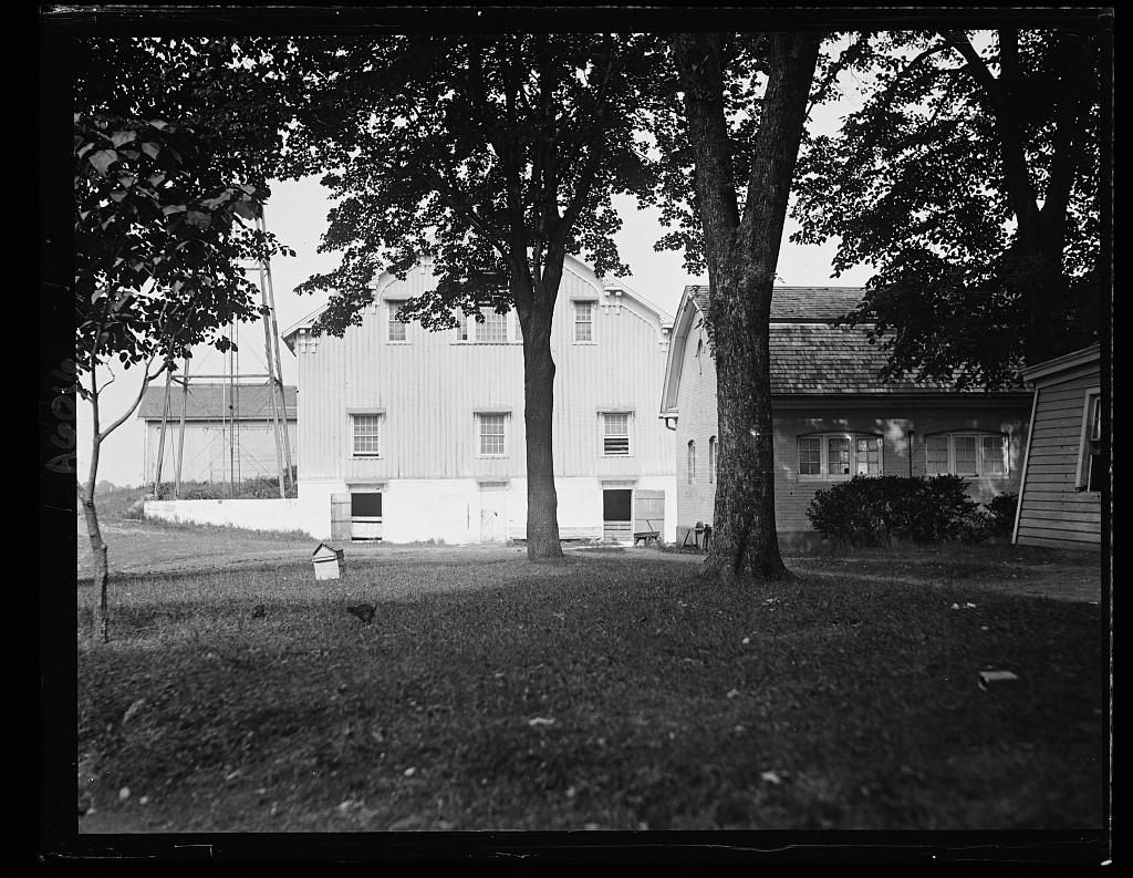 Wilson estate