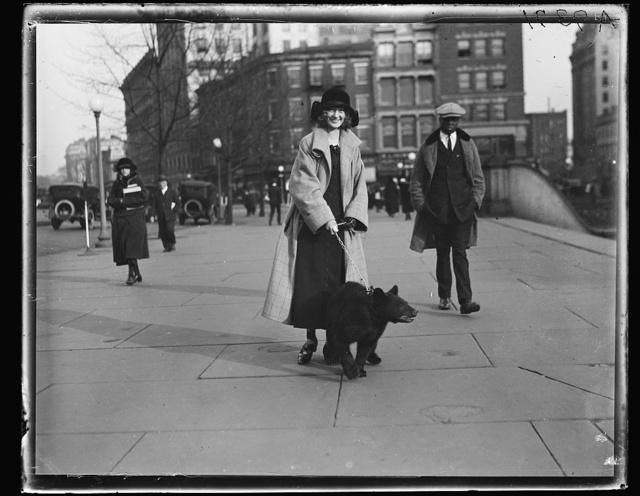 [Woman walking bear on leash]