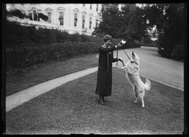 [Grace Coolidge with dog outside White House, Washington, D.C.]