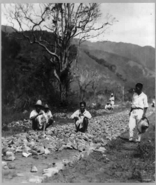 Igorots building a road on a mountain in the wilderness, Luzon, Philippine Islands