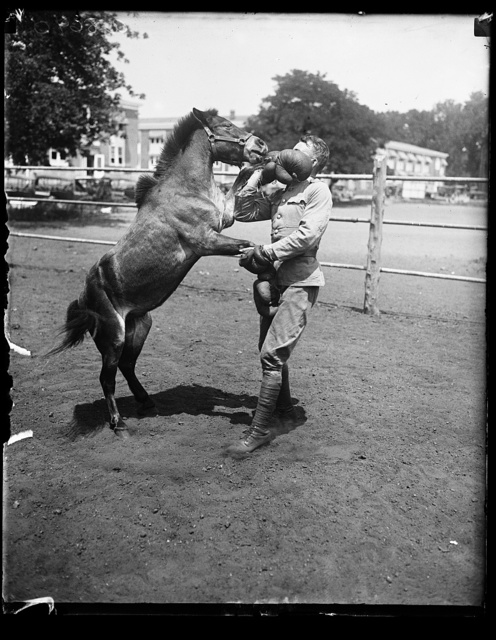 Tony, a small Shetland pony, better known as the battler, is the light weight champion before the exclusive remount stable in Wash. Photo. shows Tony giving a few lessons in the art of fisticuffs to Albert Walker of the Veterinary Dept. U.S. Quartermaster Corps. The pony is owned by Edna Van Duyne, 9 yr. old daughter of Col. Frederick W. Van Duyne U.S. Navy