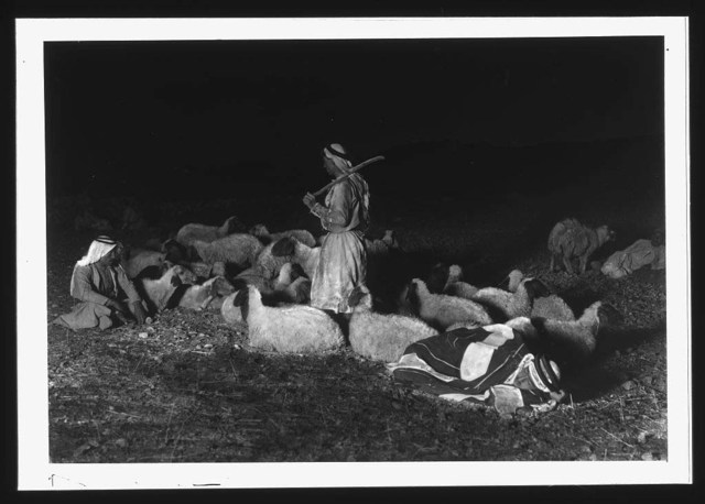"""[Agriculture, etc. """"While shepherds watched their flocks"""". Night scene showing Bethlehem in the distance]"""