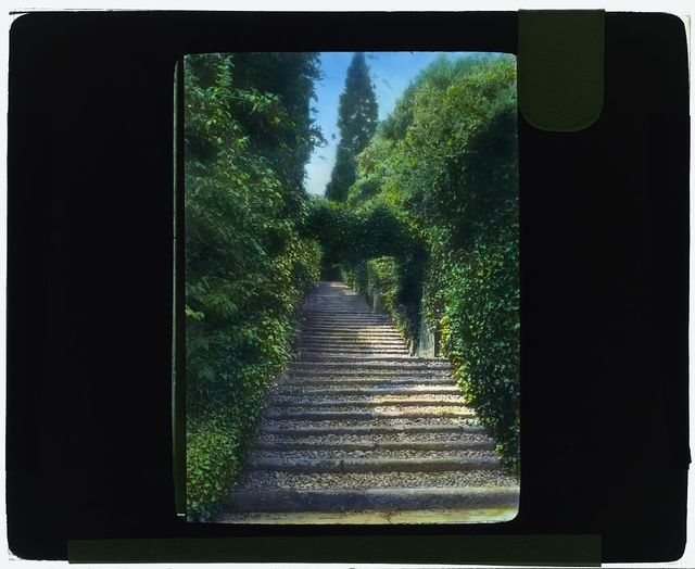 [Botanical Garden, Isola Madre, Lake Maggiore, Piedmont, Italy. Stairway]