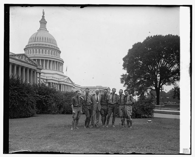 Tree surgeons at Capitol, [8/20/25]