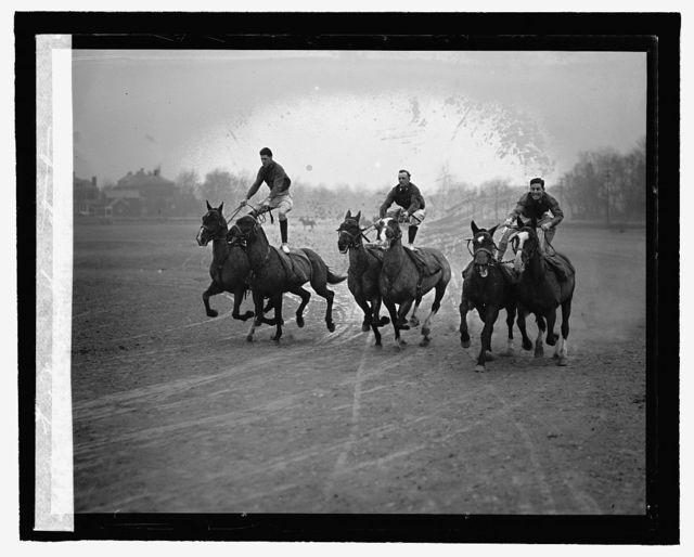 Fort Myer horse stunts