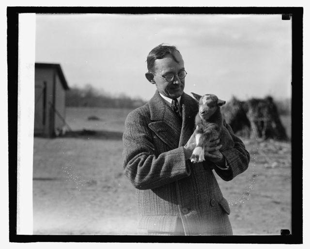 H.E.F. & lamb, Herbert E. French, photographer