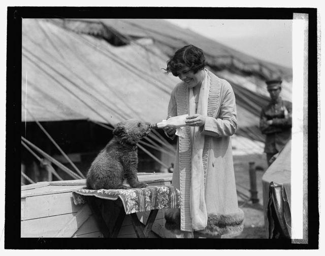 Mme. Cato Pallenberg & bear, [5/10/26]