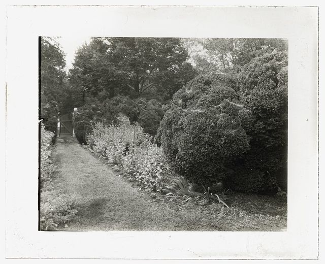 "[""Redlands,"" Polly Coles and Sally Randolph Carter house, Carter's Bridge, one mile east of intersection of Routes 708 and 627, Covesville, Albemarle County, Virginia. Pathway]"