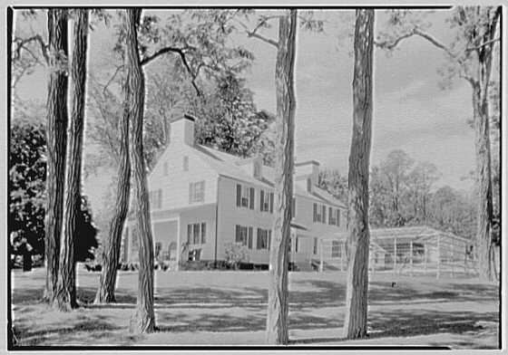 W.H. Dixon, residence in Saint James, Long Island. House through locusts, from northeast