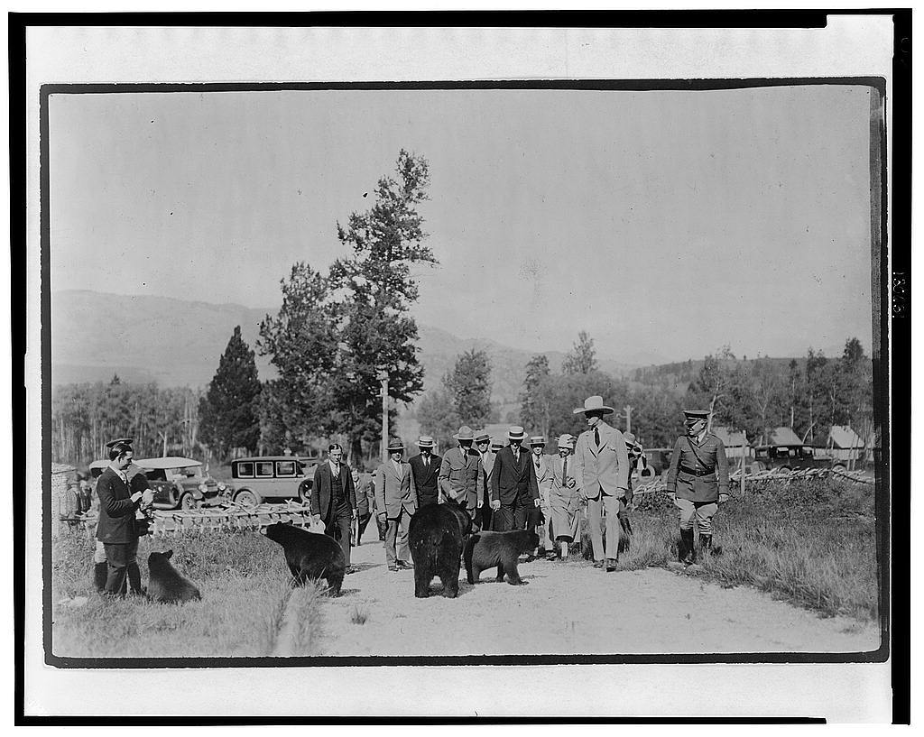 President and Mrs. Coolidge and party at Roosevelt Lodge, Yellowstone National Park