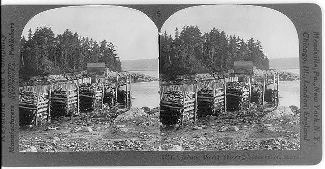 Lobster pound, showing construction, Maine