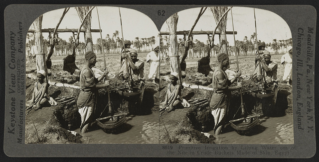 Primitive irrigation by lifting water out of the Nile in crude buckets made of skin, Egypt