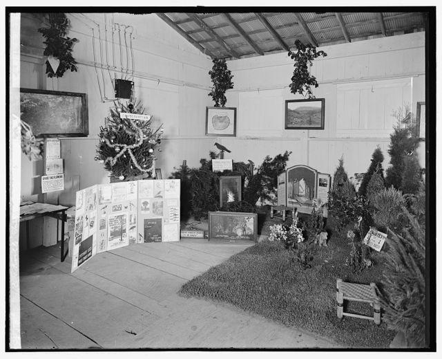 Rockville Fair, [Maryland], 1928