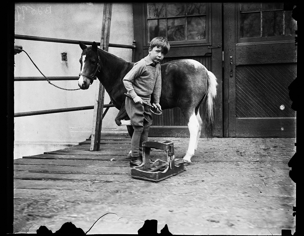 """Washington society youngster shoes pony for children's horse show. Young Howland Russell, grandson of Mrs Borden Harriman, refuses to intrust to a groom the important business of preparing his pony """"Tottles"""" for the Children's Horse Show which will held in the National Capital on St. Patrick's Day"""