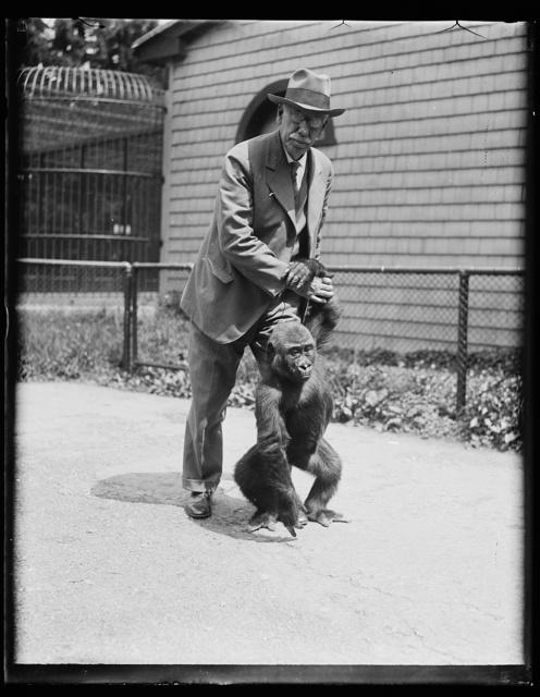 [Man with ape]