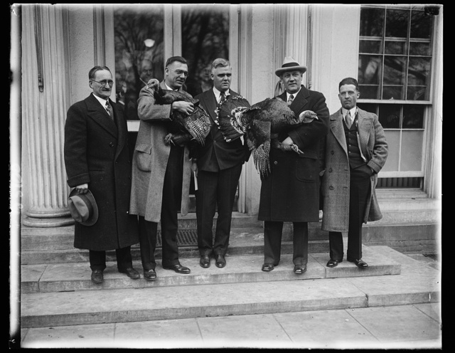 Turkeys to grace the White House table. The turkey chosen for the President and Mrs. Hoover by the Minnesota Arrowhead Association was selected as the champion bird of the Arrowhead country. The President's turkey was raised on the farm of Mrs. August Neubauer, at Lost Lake, near Gilbert, Minnesota. In the group left to right, H.P. McBride, Percy C. Klein George Ackerson, one of the President's Secretaries, R.C. Middaugh, and Roy Drake