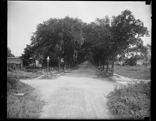[View of V Street, S.W., Washington, D.C.]