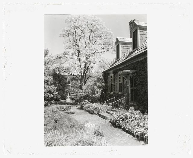 "[""York Hall,"" Captain  George Preston Blow, Route 1005 and Main Street, Yorktown, Virginia. Pathway at guest cottage]"