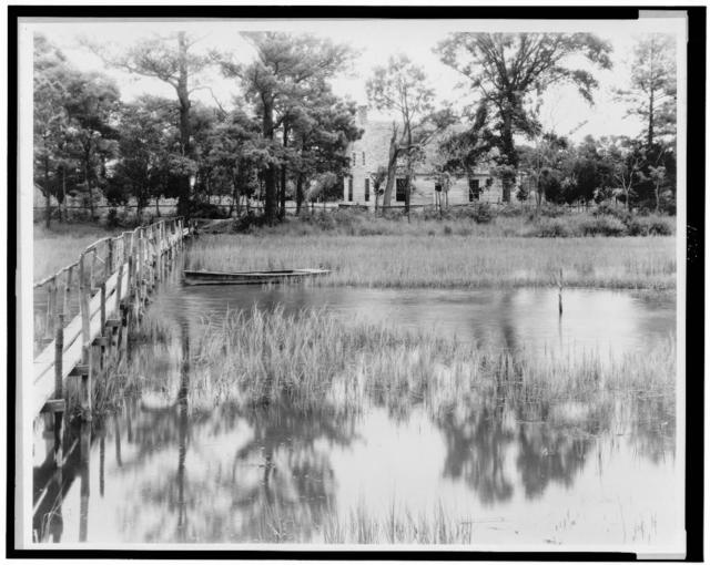 Brownsville marsh, Nassawadox, Northampton County, Virginia
