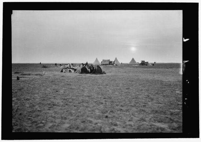 Locust plagues in Palestine. Methods of fighting the locust plague. Camp of the locust fighters. An evening scene at Shaluf