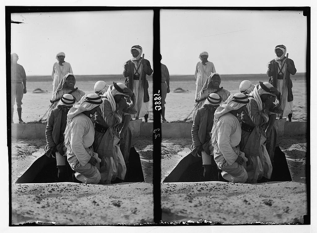Locust plagues in Palestine. Methods of fighting the locust plague. Tramping down a pit of locusts. A smelly job as shown by the labourers holding their noses