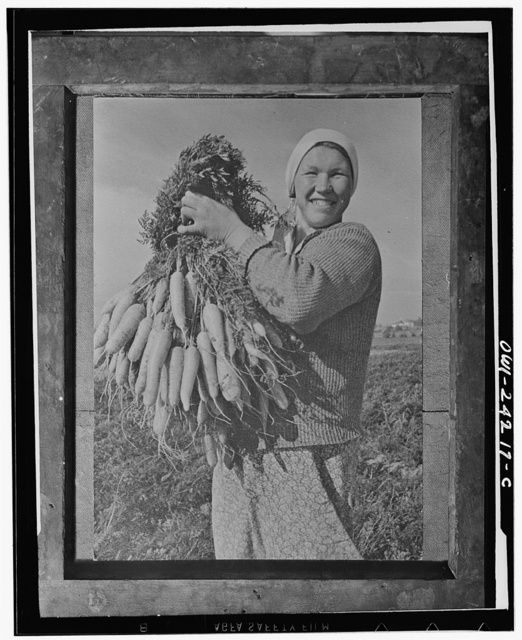 Marusya Sukhova with carrots grown on a collective farm in the Gorki region in the USSR (Union of Soviet Socialist Republics)