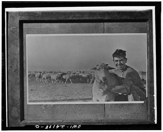 Shepherd on a Jewish collective farm in th Crimea, USSR (Union of Soviet Socialist Republics)