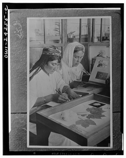 Tashkent (vicinity), USSR (Union of Soviet Socialist Republics). Girl students of botany at a collective farm