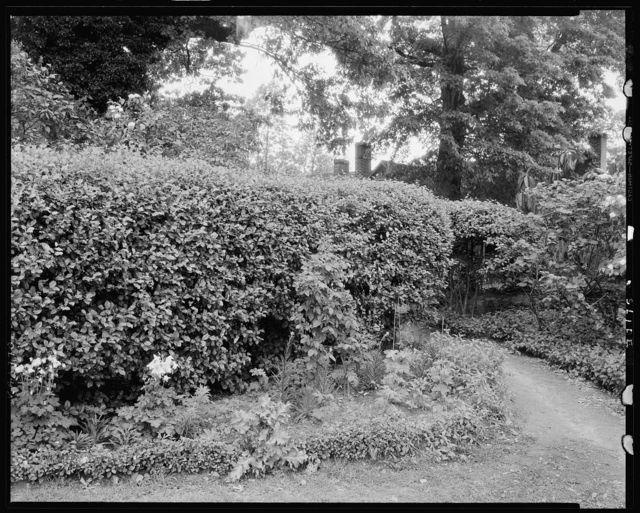 Buckhead Springs, Richmond vic., Henrico County, Virginia
