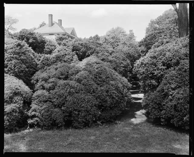 Montpelier, box garden, Laurel vic., Prince George's County, Maryland