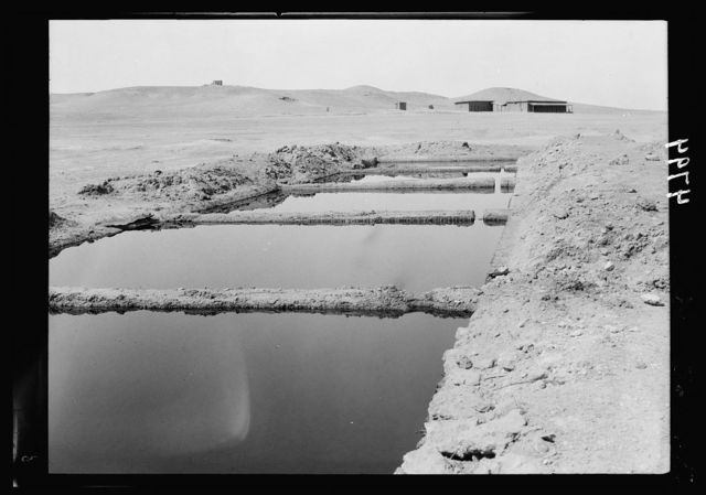 Iraq. Gayara. Area of bituminous wells S. of Mosul. Series of bitumen storage pools