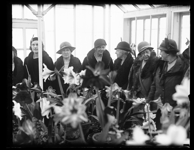 Mrs. Herbert Hoover and cabinet ladies at amaryllis show. The First Lady of the land and ladies of the cabinet viewed the beautiful blooms at the Department of Agriculture amaryllis show in Washington today. In the photograph, left to right; Mrs. Ogden L. Mills, wife of the Secretary of the Treasury; Mrs. Arthur M. Hyde, wife of the Secretary of Agriculture; Mrs. Herbert Hoover; Mrs. Charles Francis Adams, wife of Secretary of Navy; Mrs. Walter F. Brown, wife of Postmaster General; and Mrs. William D. Mitchell, wife of Attorney General. 3/23/32