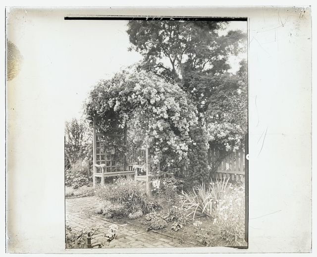 "[""Stratford Hall,"" 786 Great House Road, Stratford, Westmoreland County, Virginia. Rose arbor seat]"