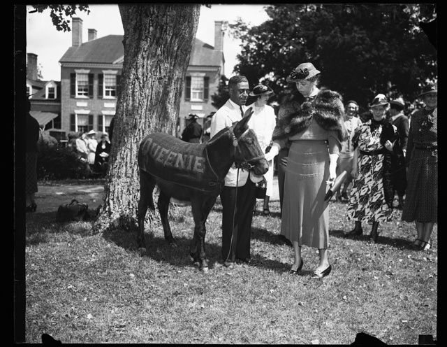 FIRST LADY MEETS DEMOCRATIC PARTY MASCOT. WASHINGTON, D.C. MRS. ROOSEVELT FEEDS 'QUEENIE,' THE OFFICIAL MASCOT OF THE DEMOCRATIC PARTY, A LUMP OF SUGAR AT THE LUNCHEON AND GARDEN PARTY GIVEN AT WOODLAWN, THE HOME OF THE SECRETARY OF WAR AND MRS. HARRY H. WOODRING. 'QUEENIE,' WHO WAS A PRESENT TO POSTMASTER GENERAL FARLEY LAST WINTER BY AN ADMIRER, WAS THE CENTER OF ATTRACTION AT THE PARTY WHICH WAS GIVEN BY THE WOMEN'S [...]