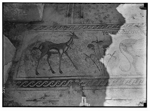 "Mount Nebo. ""Jebel Nebba"". Nebo, Chapel of St. Mary. Detail of the mosaics; gazelle & flowers"