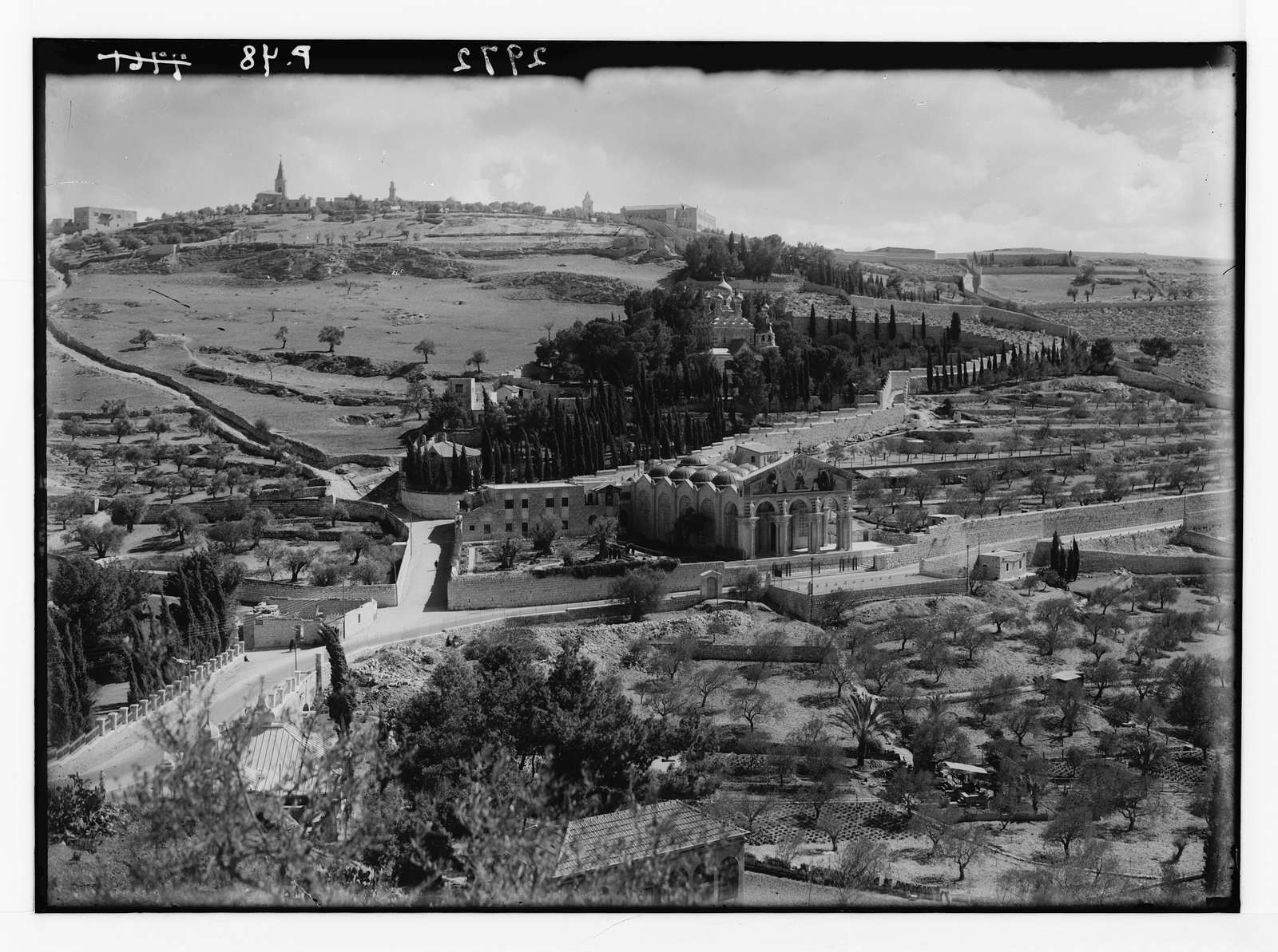 Mount of Olives and Gethsemane. Garden of Gethsemane. Taken since stately cypress trees were removed in 1933