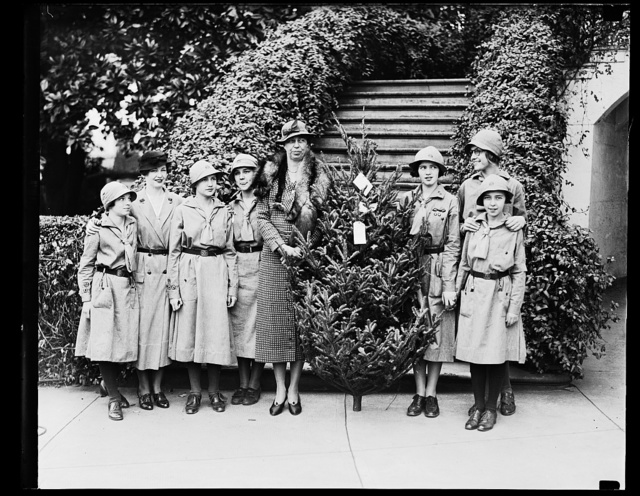 MRS. ROOSEVELT RECEIVES X-MAS TREE FROM GIRL SCOUTS