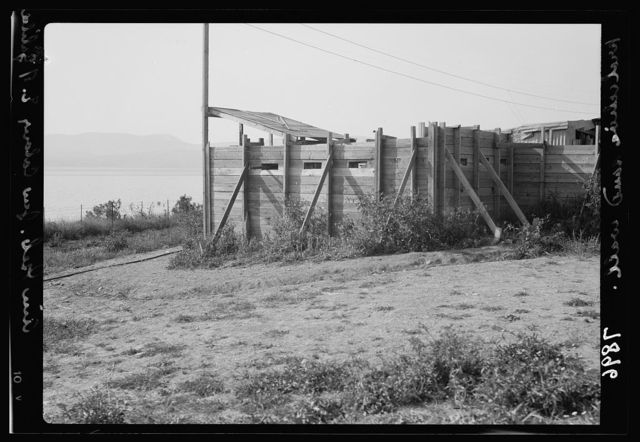 Ain Geb. Jewish settlement on the east side of S. Galilee. Defences [i.e., defenses] at corners of the settlement