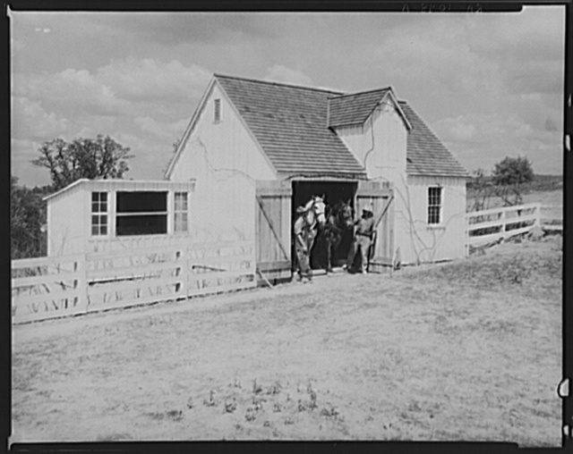 Barn. Reedsville, West Virginia