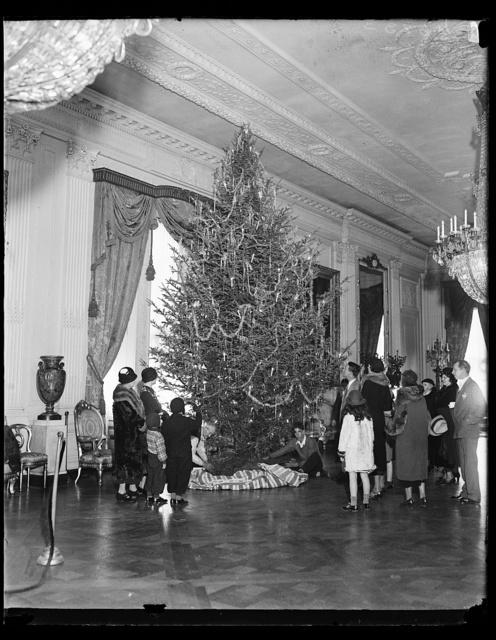 [Christmas tree, White House, Washington, D.C.]