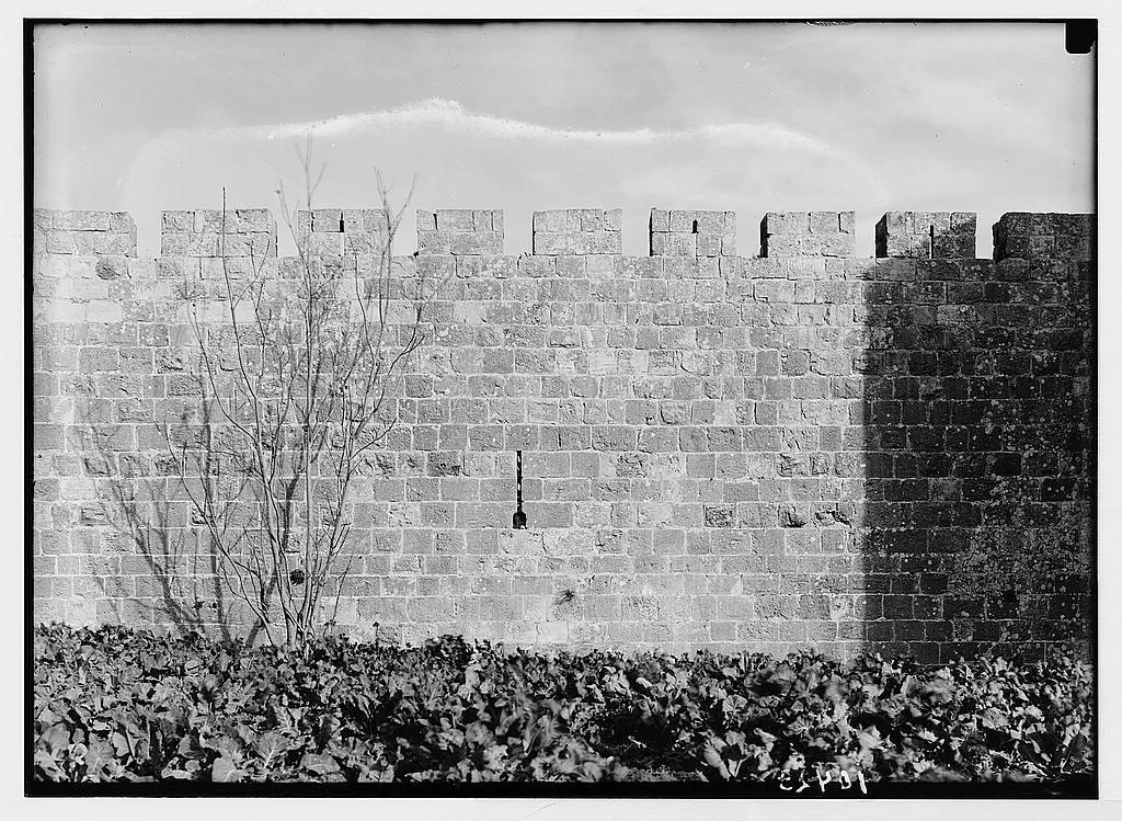 Close up of the Citadel ramparts [Jerusalem]