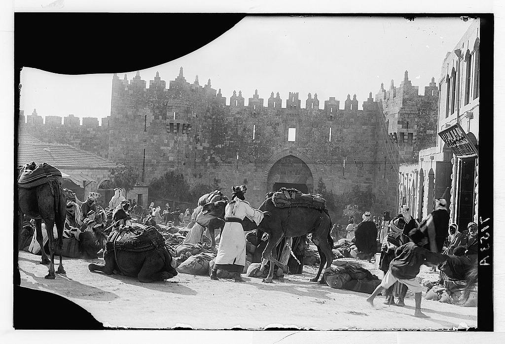 [Damascus Gate. Bedouins unloading wheat-laden camels]