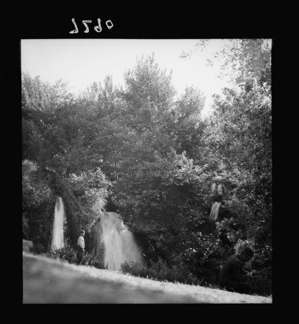 Daphne waterfalls