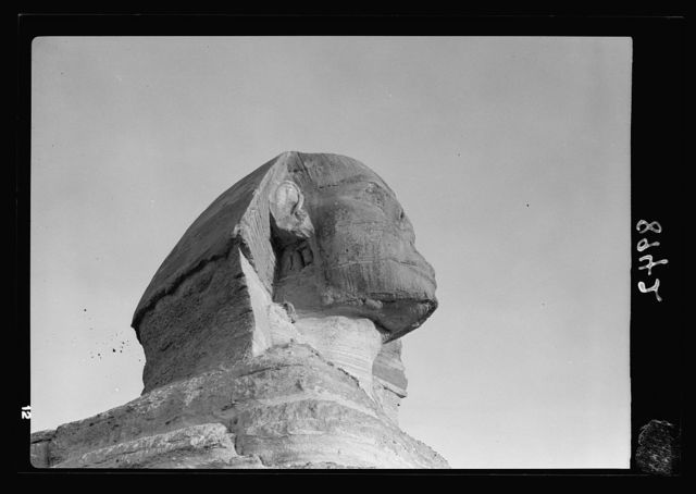 Egypt. Sphinx & pyramids. Sphinx head (close up)