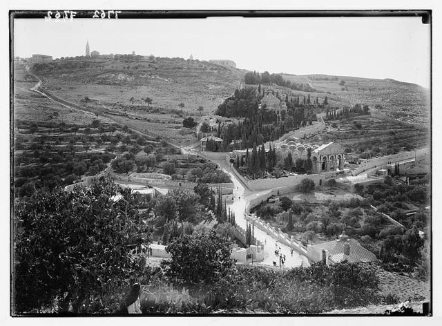 Gethsemane & Olivet from the city wall