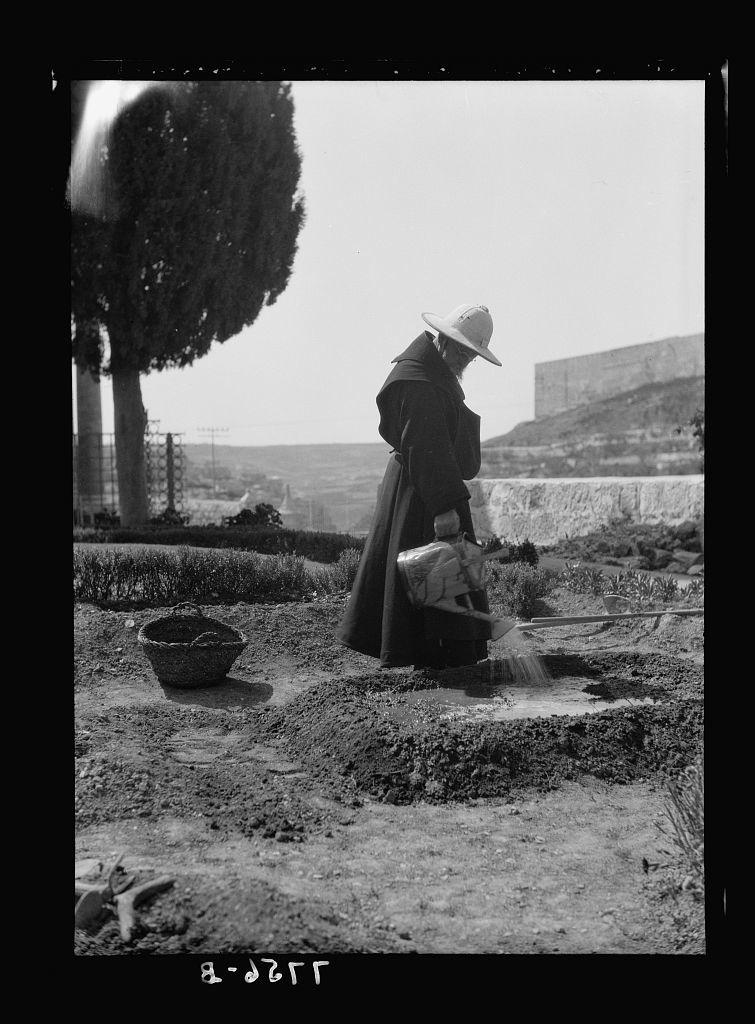 Gethsemane. In garden