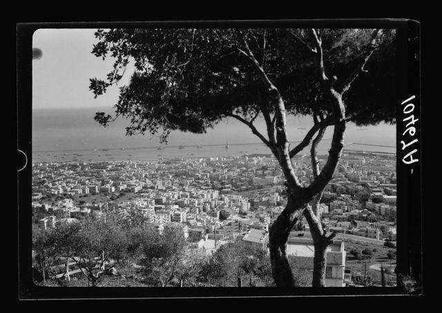 Haifa & the harbour [i.e., harbor] from the slopes of Mt. Carmel