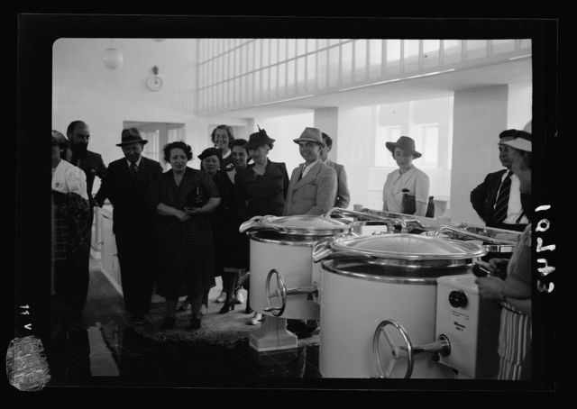 New Hadassah University Medical Centre, Jerusalem (Scopus). Group investigating the electric cookers
